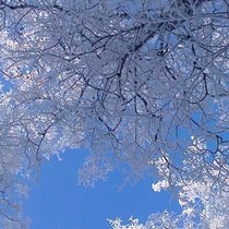 Ароматизатор Мороз и свежесть