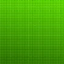 Универсальный краситель, цвет светлый зеленый