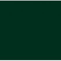 Фоамиран иранский 30х30 см, №38 цвет темно-темно-зеленый