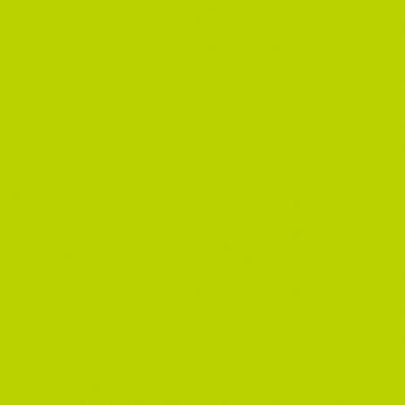 Фоамиран иранский 30х30 см, цвет васаби