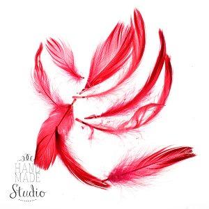Перья красные малые