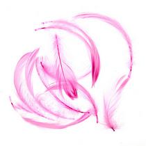 Перья розовые малые