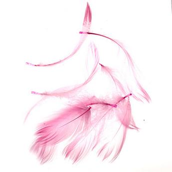 Перья малиновые малые