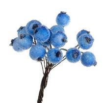 Ягода декоративная калина сахарная, цвет голубой