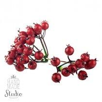 Гроздья красной ягоды