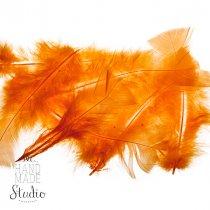 Перья оранжевые большие