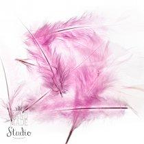 Перья светло-розовые большие