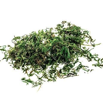 Мох натуральный  Зеленый, 10 гр