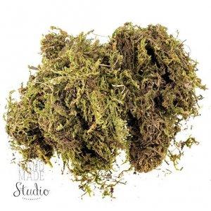Мох натуральный  Зеленый, 60 гр