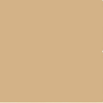 Универсальный краситель, цвет коричневый