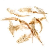 Перья светло-коричневые, 5 штук