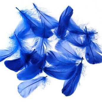Перья синие большие