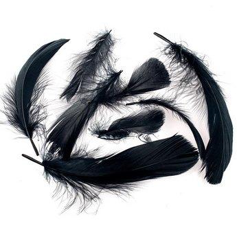 Перья черные большие
