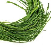 Рафия, цвет зеленый, 60 г.