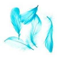 Перья голубые, 5 штук