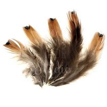 Перья с коричневым узором и оранжевым хвостиком, 5 штук