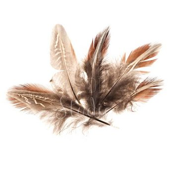 Перья пуховые с коричневым узором