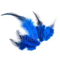 Перья ярко-синие