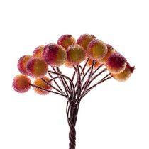 Ягода декоративная  сахарная, цвет красно-желтый,  20 двухсторонних ягод