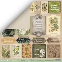 Лист двусторонней бумаги 30x30 от Scrapmir Карточки из коллекции Cozy Forest, 190г/м2, 1 лист