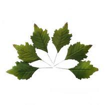 Листья  большие универсальные зеленые, 6 шт