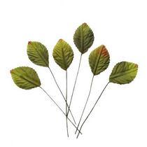 Листья универсальные маленькие зеленые 5,5х8 см, 6 шт