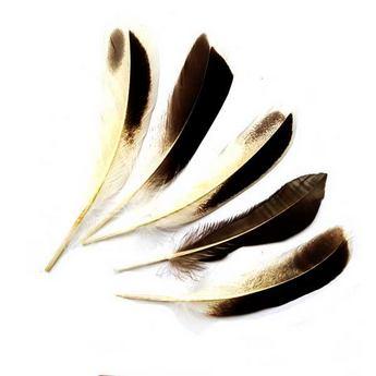 Перья дикой утки натуральные