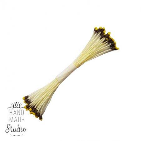 №6 Квіткові тичинки жовті, з коричнево-жовтими кінцями