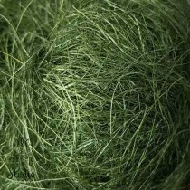Сизаль, цвет болотный, 40 г.