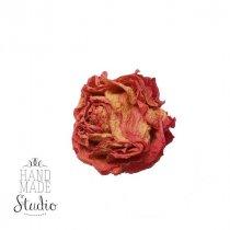 Сухоцвет бутон розы (3-3,5 см)