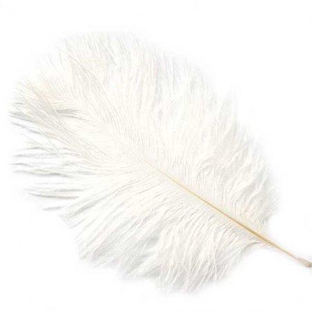 Перо страуса белое 15-20 см (1 шт.)