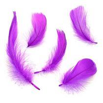 Перья фиолетовые, 5 штук