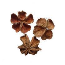 Сухоцвет Dry Clower натуральный, 10-15 см