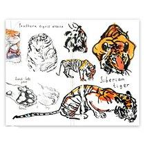 "Блокнот для графики и письма Classic Foxandowl ""Амурский тигр""А5, 120г/м2, 32л., MAXGOODZ"