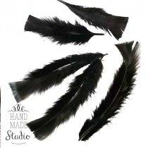 Перья большие, цвет черный, 5 штук