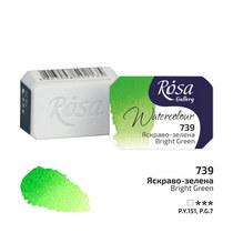 Краска акварельная №739 Ярко-зеленая, 2,5мл, ROSA Gallery
