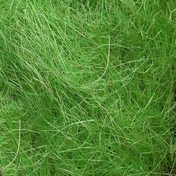 Сизаль, цвет травяной, 40 г.