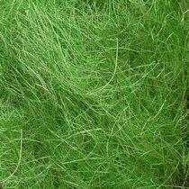 Сизаль, цвет зеленый, 40 г