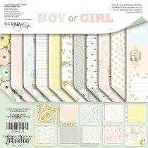 """Набор двусторонней бумаги 20х20см """"BOY or GIRL"""", 190г/м2, 10 листов+1 лист с карточками"""