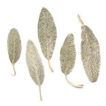 """Сушеные листья """"Заячьи ушки"""", 5 штук"""