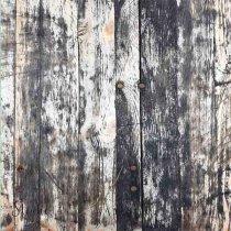 Виниловый безбликовый фотофон Дерево №3,50*50 см