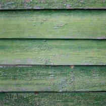 Виниловый безбликовый фотофон Дерево №9,50*50 см