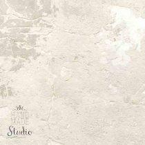 Виниловый безбликовый фотофон Стена №2,50*50 см
