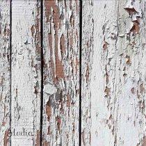 Виниловый безбликовый фотофон Дерево №6, 50*50 см