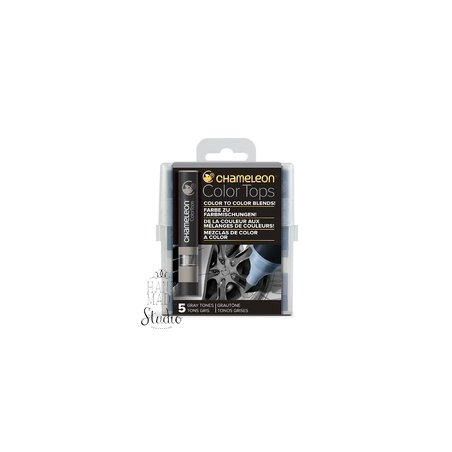 Набор 5 блендеров Chameleon 5 Color Tops Gray Tones Set СТ4509