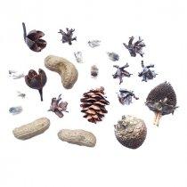 Мини микс сухоцветов, орехов и шишек