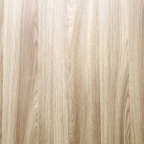 Виниловый безбликовый фотофон Дерево №13,50*50 см
