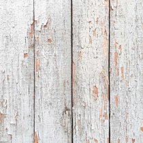 Виниловый безбликовый фотофон Дерево №15,50*50 см