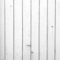 Виниловый безбликовый фотофон Дерево №30, 50*50 см