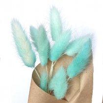 Сухоцвет Лагурус (Заячьи хвостики), цвет голубой,10 штук